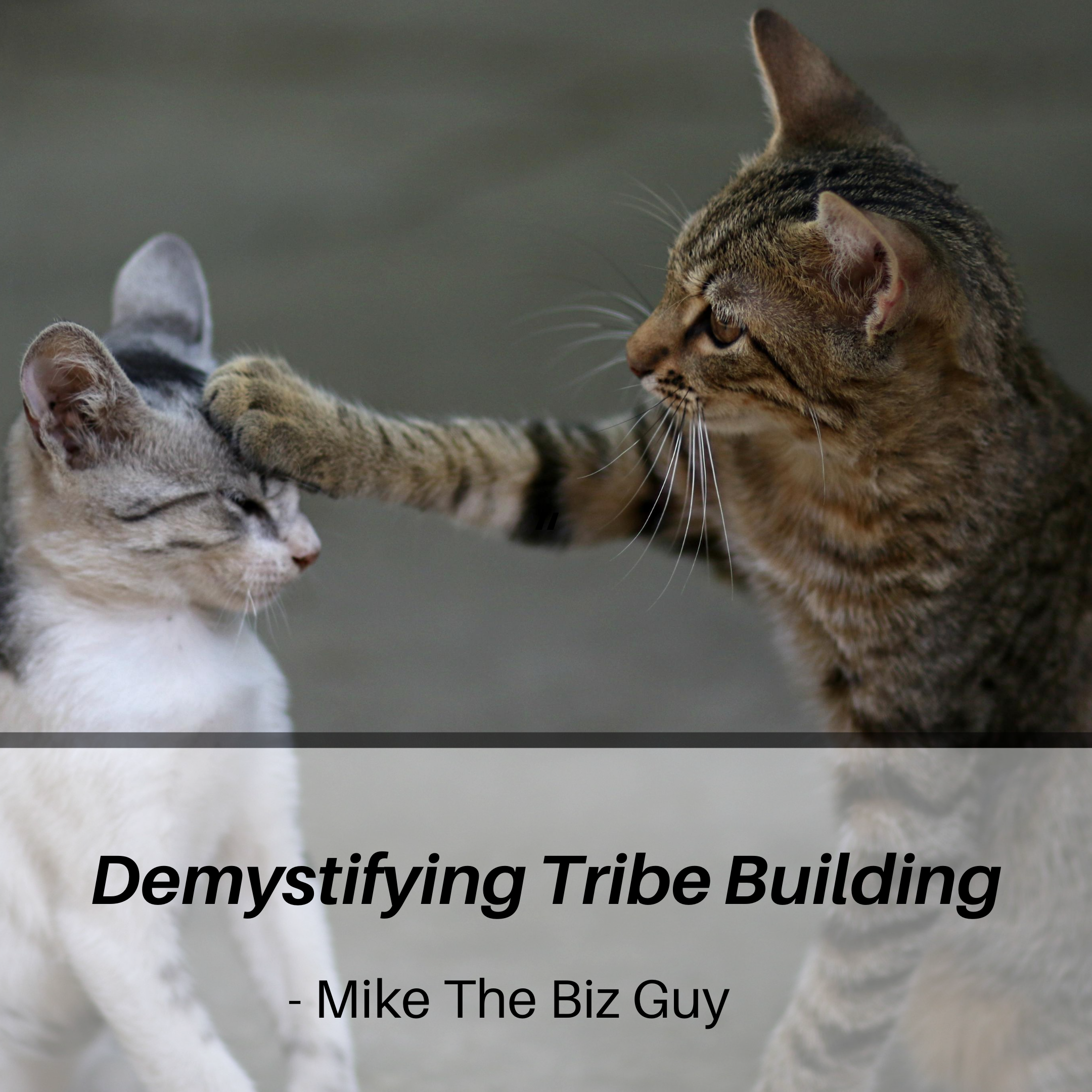 Demystifying Tribe Building - Mike The Biz Guy